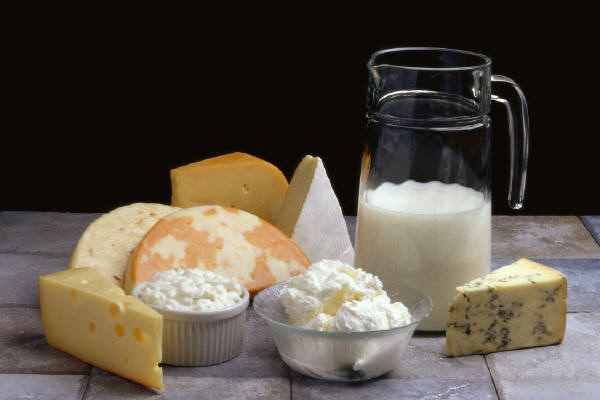 Mléčná dieta 16 dní