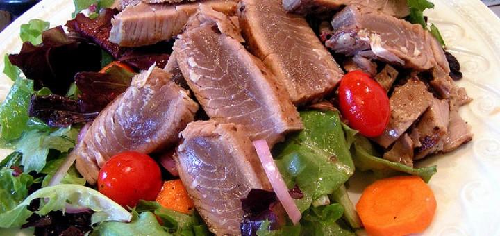 bílkovinná dieta