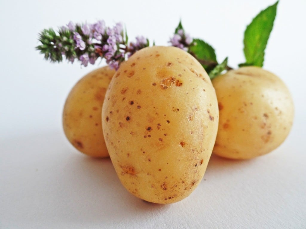brambory2
